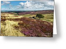 Top Withins On Haworth Moor Greeting Card