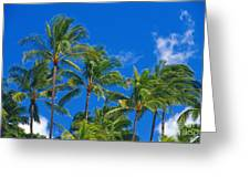 Tops Of Palms Greeting Card