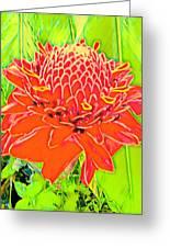 Torch Ginger Aloha Greeting Card