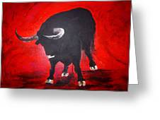 Toro Two On Red  Greeting Card
