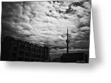 Toronto Morning Black And White Greeting Card