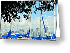 Toronto Through A Forest Of Masts Greeting Card