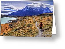 Torres Del Paine 21 Greeting Card