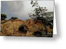 Torrey Pines-2 Greeting Card