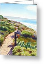 Torrey Pines Guy Fleming Trail Greeting Card