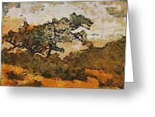 Torrey Pines Greeting Card
