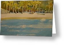 Tortuga Island Costa Rica Greeting Card