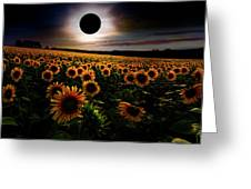 Total Eclipse Over The Sunflower Field Greeting Card