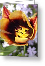 Totally Tulip Greeting Card