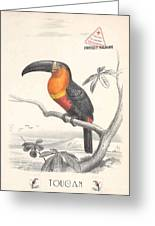 Toucan Bird Responsible Travel Art Greeting Card