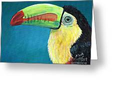 Toucan Portrait Greeting Card