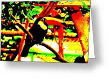 Toucan Tourcanna Greeting Card