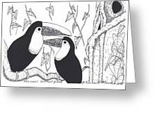 Toucans Central Park Greeting Card