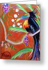 Toucanwine Bird Greeting Card