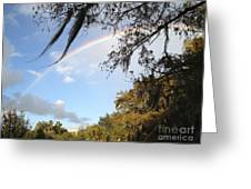 Touch A Rainbow  Greeting Card