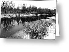 Touch Of Winter Black And White Greeting Card