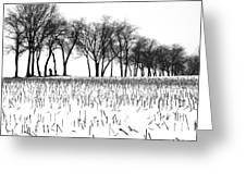 Touch Of Winter Blk N Wht Greeting Card