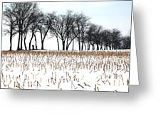 Touch Of Winter  Greeting Card