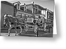 Touring The French Quarter Monochrome Greeting Card