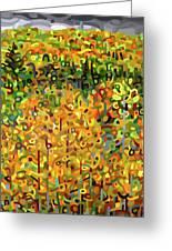 Towards Autumn Greeting Card