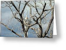 Tower And Trees Greeting Card