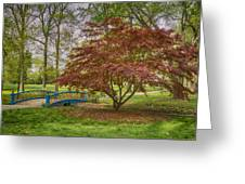 Tower Grove Arched Bridge And Maple Tree Dsc01828 Greeting Card