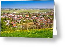 Town Of Ivanec Aerial Springtime View Greeting Card