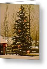 Town Tree Greeting Card by Bob Berwyn