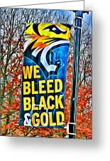 Towson Tigers Black And Gold Greeting Card