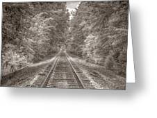 Tracks Bw Greeting Card