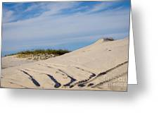 Tracks In The Sand Dunes Greeting Card
