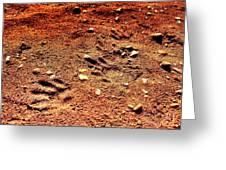 Tracks On Mars Greeting Card