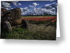 Tractor N' Tulips Greeting Card