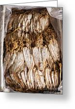 Traditional Sun Dried Squid In Kep Market Cambodia Greeting Card