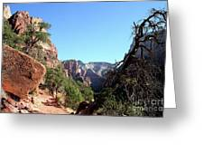 Trail - Zion Park Greeting Card