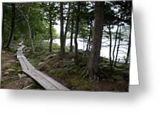 Trail At Jordan Pond Greeting Card