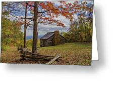 Trail Cabin Greeting Card