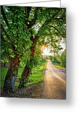 Trail Into Sunset Greeting Card