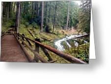Trail Over Sol Duc Falls Bridge In Olympic National Park Greeting Card