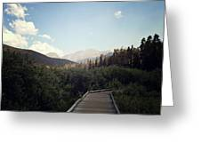 Trail Ridge Road Greeting Card