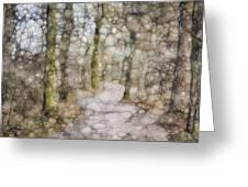 Trail Series Greeting Card