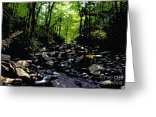 Trail To Chimney Top Greeting Card