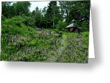 Trail To The Cabin Greeting Card