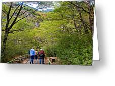 Trail To Waterfall In Vicente Perez Rosales National Park Near Puerto Montt-chile Greeting Card