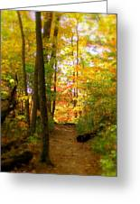 Trailhead Light Greeting Card by Ed Smith