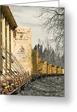 Train Cars Selective Color Greeting Card