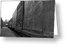 Trains 12 Blkwht Greeting Card