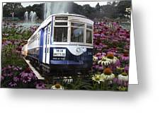 Trains Brookfield Zoo Trolley Car 141 Greeting Card