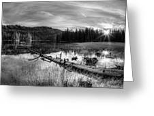 Tranquil Black And White 5 Greeting Card