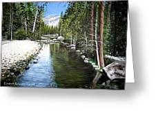 Tranquil Forest Greeting Card